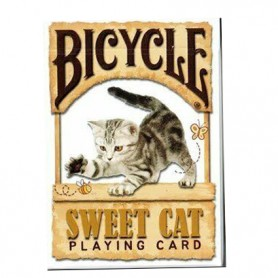 Bicycle Sweet Cat