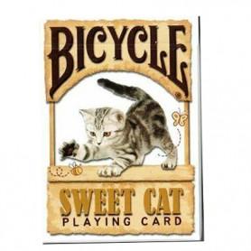 Bicycle Sweet Cat