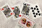 Madison Kittens deck