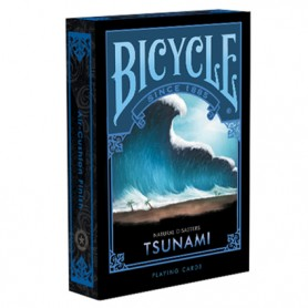 Bicycle Natural Disasters Tsunami